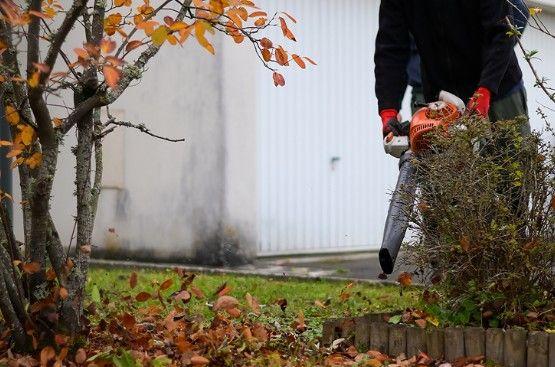 Entretien de votre pelouse